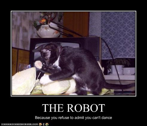 funny-pictures-cat-dances-the-robot